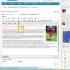 WYSIWYGEDITOR (Visual Editor) + HTML page