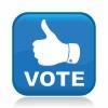 0xArt Votes