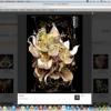PhotoGroup Plugin