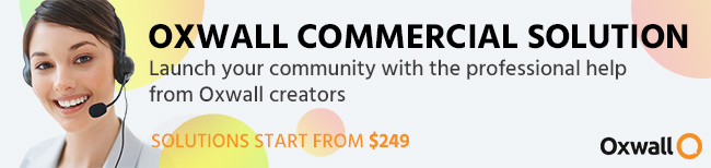 Launch your community with the professional help from Oxwall creators
